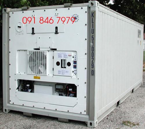 Vận Tải Container Lạnh Có Máy Phát Điện